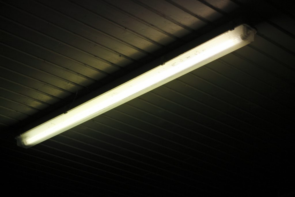 fluorescent light